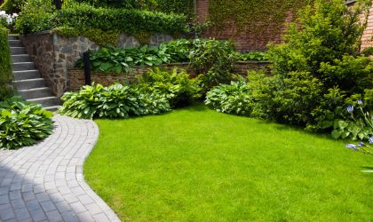 Leave the grass clippings as mulch- This practice saves you time, money, and fertilizer.