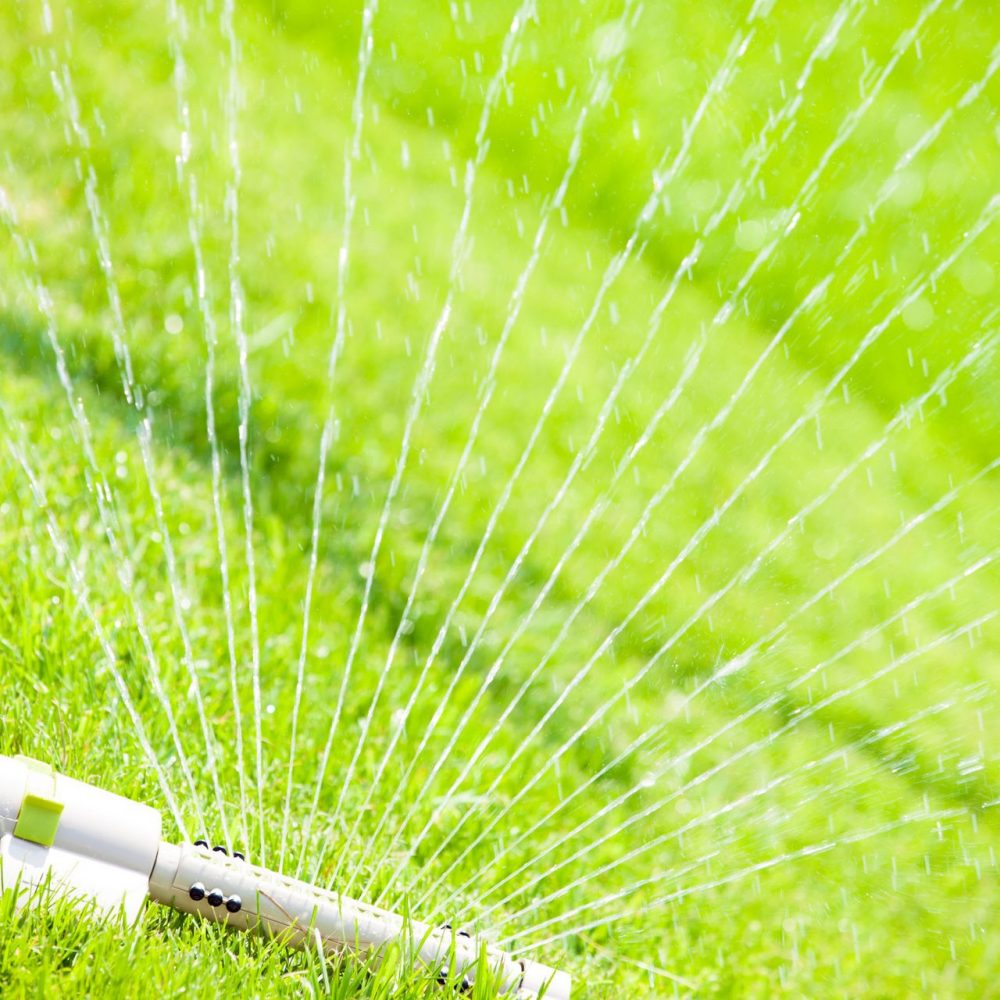 knowing when to water and how much is critical to a great lawn lawn