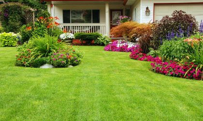 the best solution for your best lawn ever - call perma-green