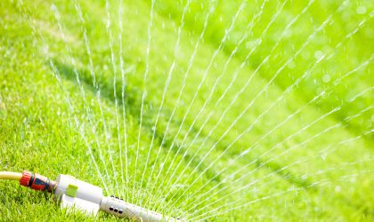 Common mistakes that can ruin even the best lawn care programs include mowing too low, watering too little or too much, or ignoring early signs of insects or disease.