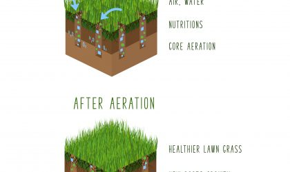 Aeration is the secret to a good-looking lawn.  It breaks up dead grass and it allows water, oxygen & fertilization to get to your lawn's roots.
