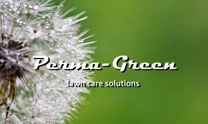 With the volume buying power of Perma-Green, Daly was able to help Carlos maintain his lawn for less money than buying the full season program and doing it himself.