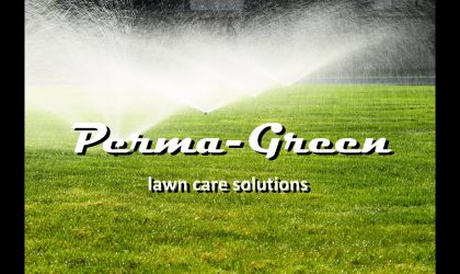 Watering New Sod   Lake County Lawn Care