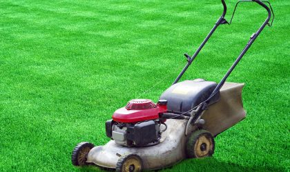 Mow at the proper height. In the heat of summer, adjust your lawn mower to the highest setting and leave grass taller