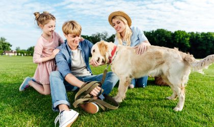 Fall Lawn Care tips can help create a great lawn next year....According to Daly, more than ever, people need to get back to spending time with family and friends. A thick, healthy lawn is the perfect venue for family get-togethers!