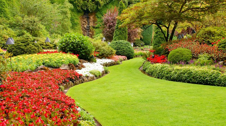 Lawn Care in Duneland and Chesterton require an understanding of how sand and traditional soil needs root nutrients to fit the needs of grass.