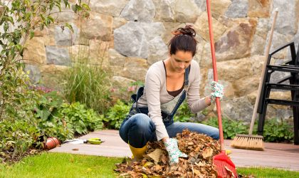 """So when is the best time to get your best lawn ever started? According to Daly, """"the best time to get next year's lawn going is when most people quit...the fall! It's a common mistake most people make. Many homeowners wrap up the watering, fertilizing, weed control, and mowing the lawn long before the grass goes dormant."""